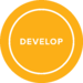 module-develop