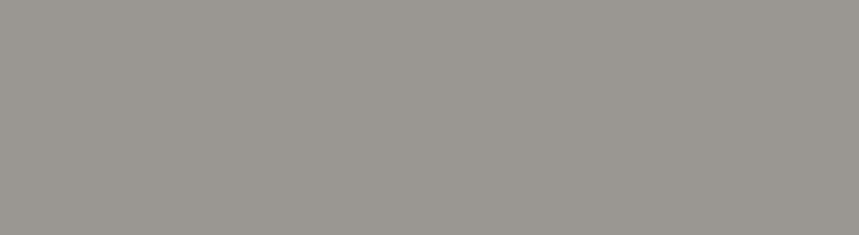 TestGenius-grey